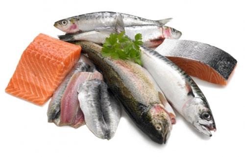 Tuyệt đối không cho chó ăn các loại cá sống