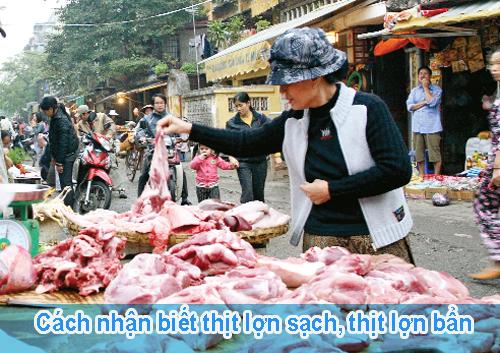 Cách nhận biết thịt lợn sạch hay thịt bị tiêm chất tạo nạc